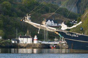 Tallship Thalassa Schotland